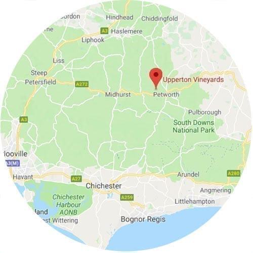 Upperton Vineyard Map